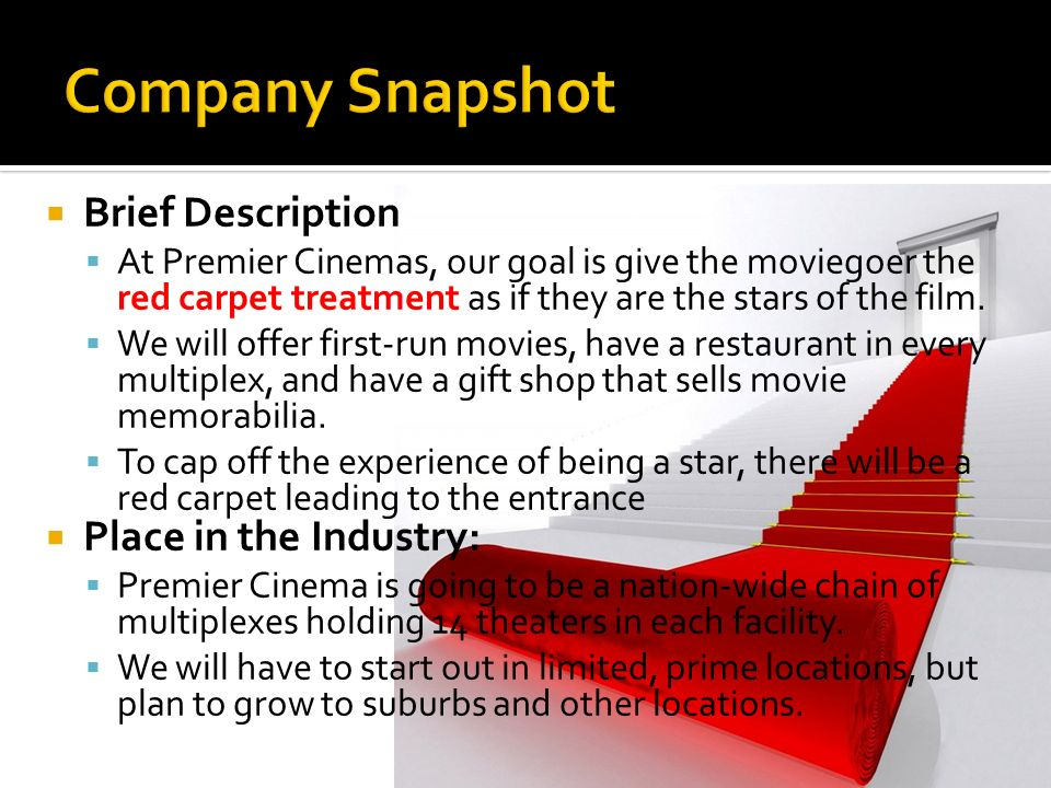 Company Snapshot Brief Description Place in the Industry: