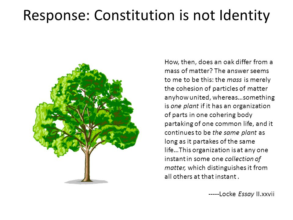 Response: Constitution is not Identity