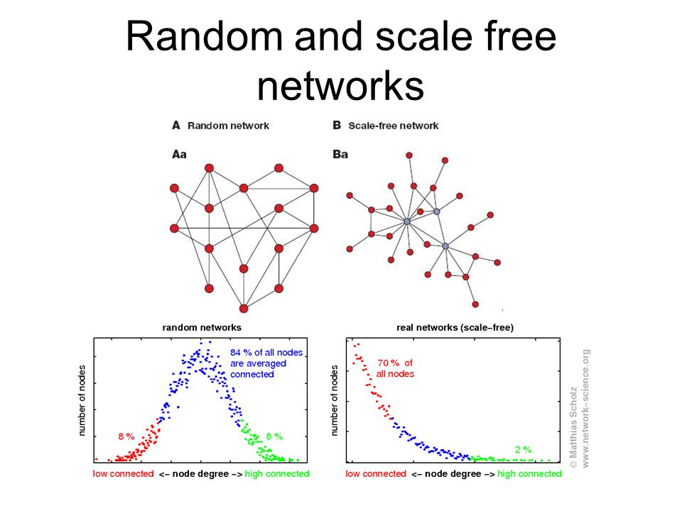 Random and scale free networks