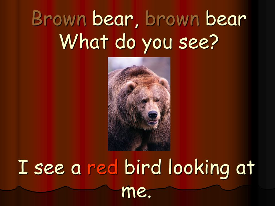 Brown bear, brown bear What do you see