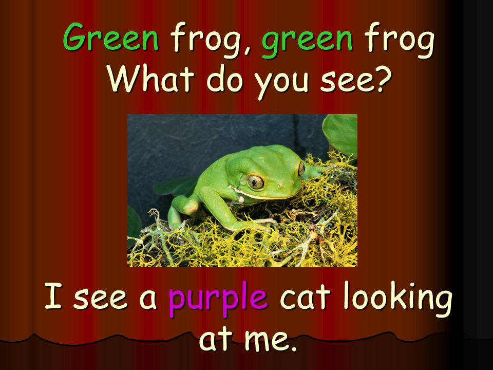 Green frog, green frog What do you see