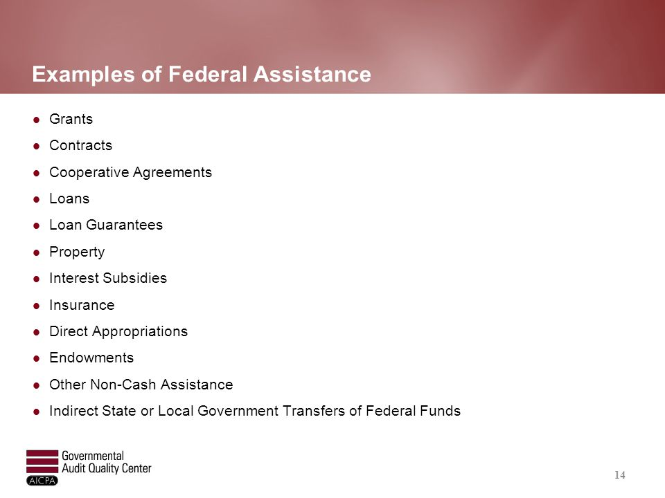 Schedule of Expenditures of Federal Awards (SEFA)