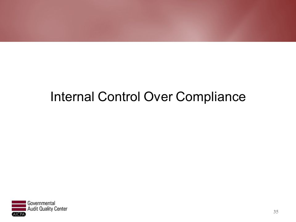 Analyzing Internal Control