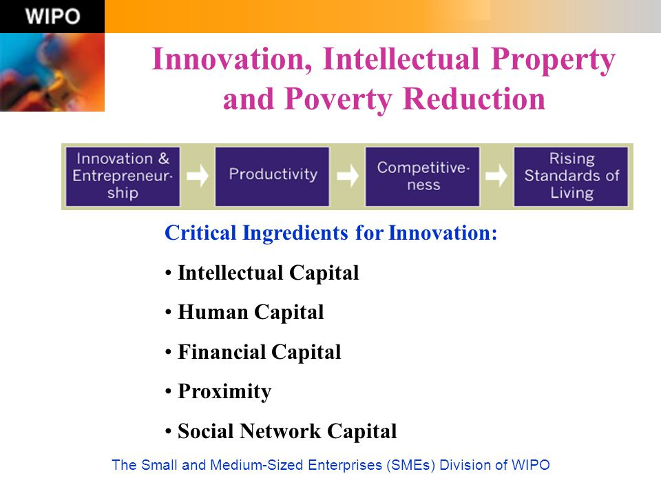 Innovation, Intellectual Property and Poverty Reduction