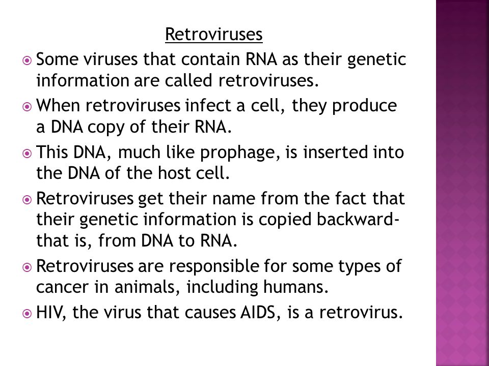 Retroviruses Some viruses that contain RNA as their genetic information are called retroviruses.