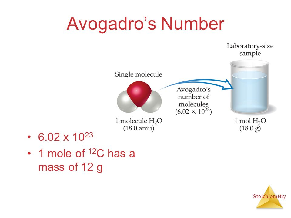 Avogadro's Number 6.02 x 1023 1 mole of 12C has a mass of 12 g