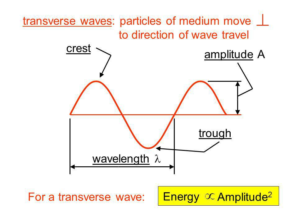transverse waves: particles of medium move