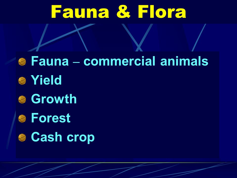 Fauna & Flora Fauna – commercial animals Yield Growth Forest Cash crop
