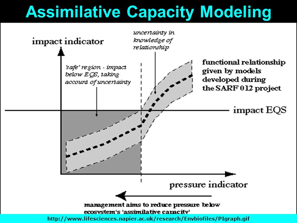 Assimilative Capacity Modeling