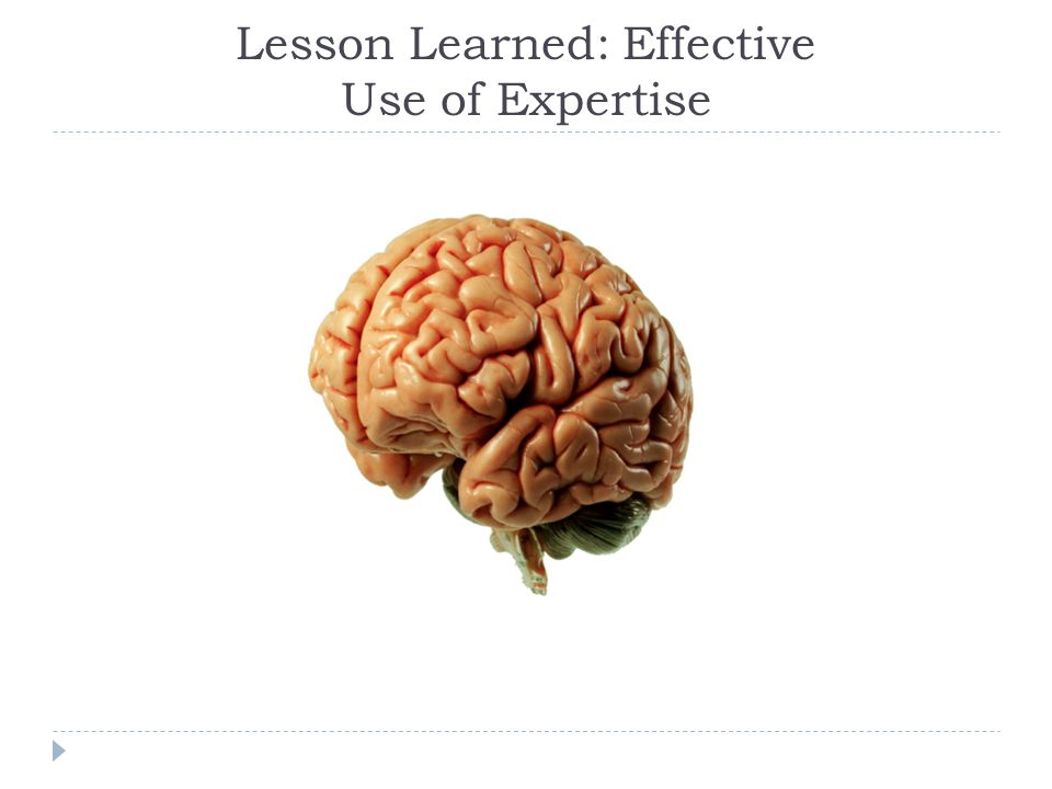 Lesson Learned: Effective Use of Expertise