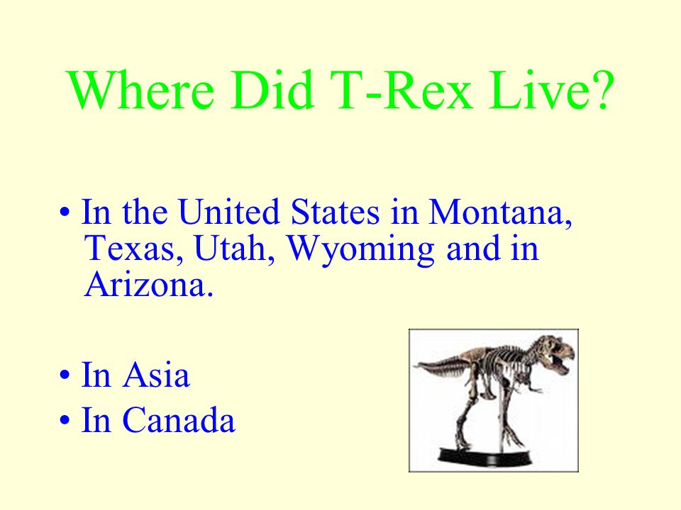 Where Did T-Rex Live • In the United States in Montana, Texas, Utah, Wyoming and in Arizona. • In Asia.