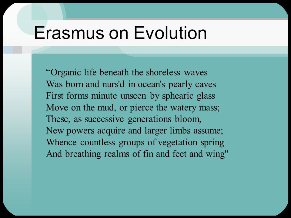 Erasmus on Evolution