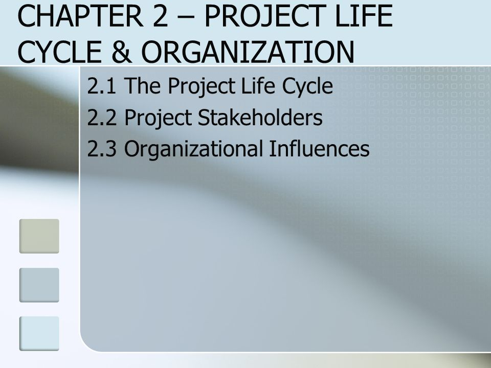 CHAPTER 2 – PROJECT LIFE CYCLE & ORGANIZATION