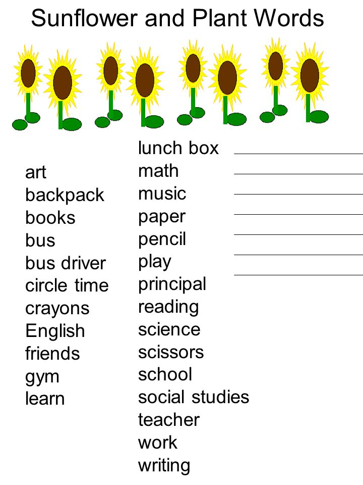 Sunflower and Plant Words