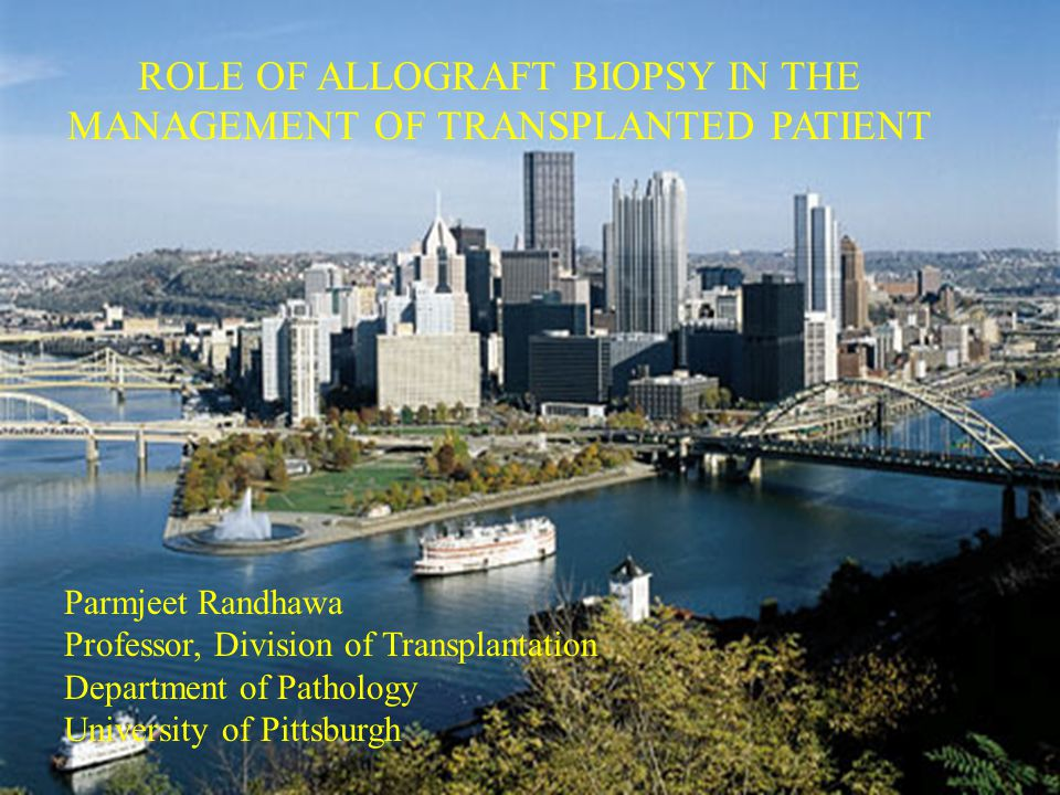 ROLE OF ALLOGRAFT BIOPSY IN THE MANAGEMENT OF TRANSPLANTED PATIENT