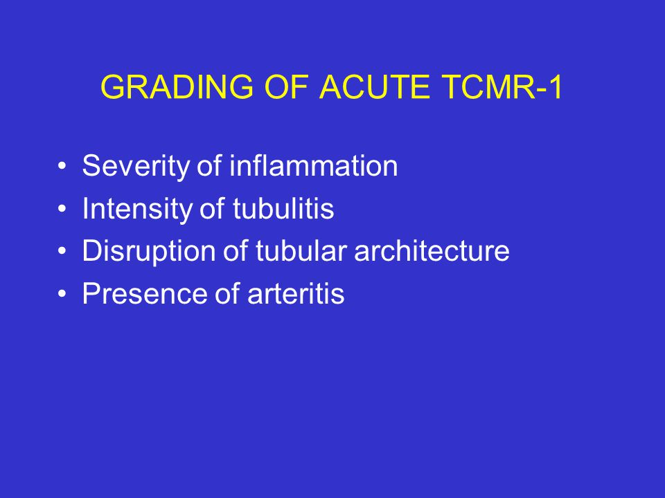 GRADING OF ACUTE TCMR-1 Severity of inflammation