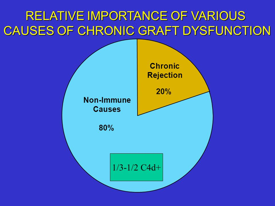 RELATIVE IMPORTANCE OF VARIOUS CAUSES OF CHRONIC GRAFT DYSFUNCTION
