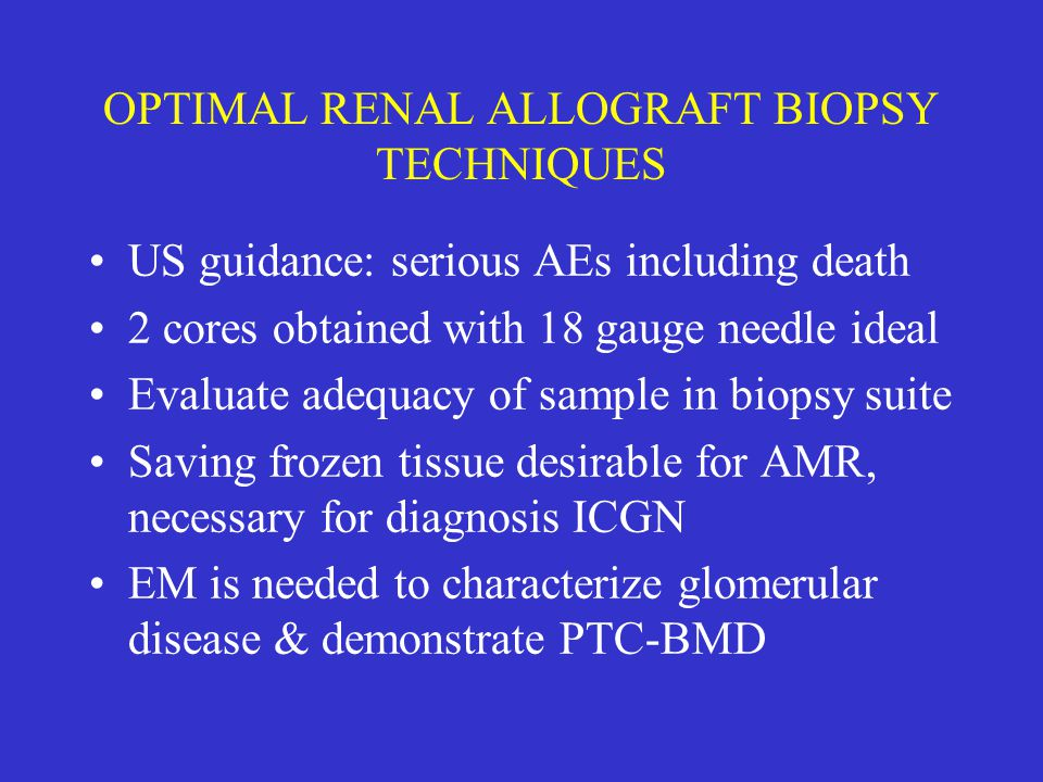 OPTIMAL RENAL ALLOGRAFT BIOPSY TECHNIQUES