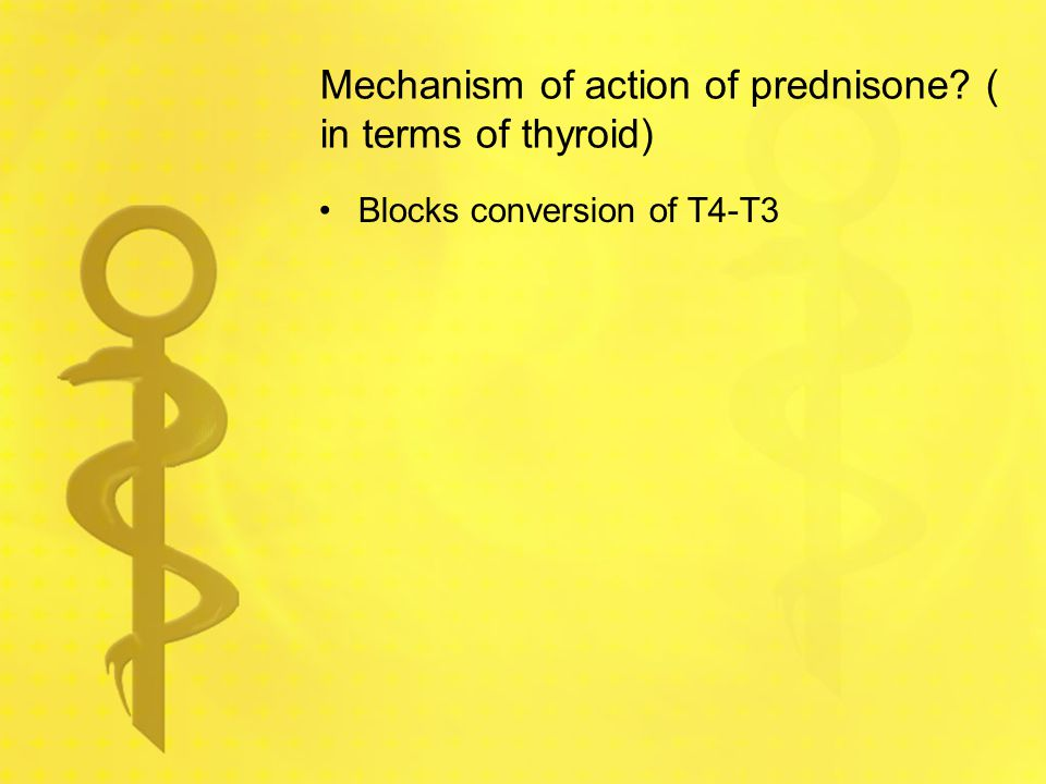 Mechanism of action of prednisone ( in terms of thyroid)