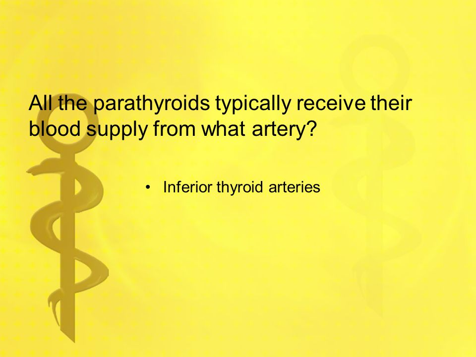 All the parathyroids typically receive their blood supply from what artery