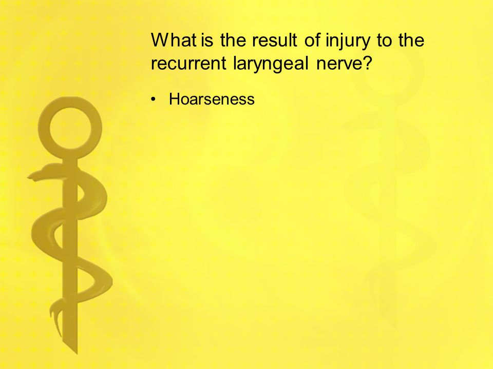 What is the result of injury to the recurrent laryngeal nerve