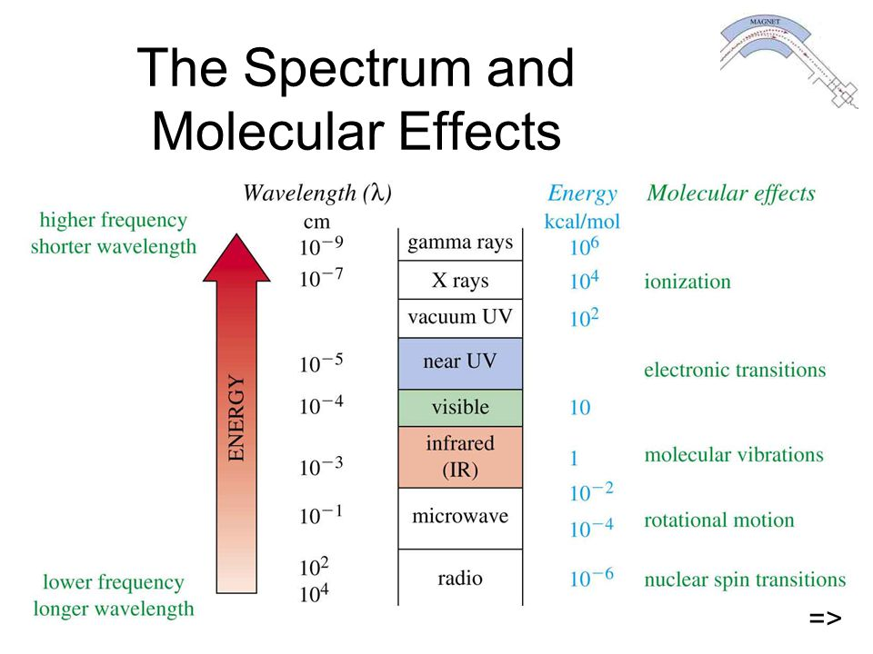 The Spectrum and Molecular Effects