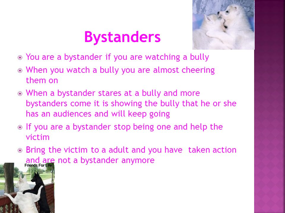 Bystanders You are a bystander if you are watching a bully