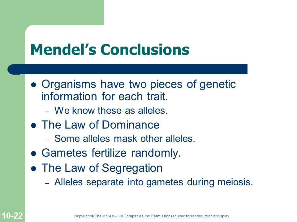 Mendel's Conclusions Organisms have two pieces of genetic information for each trait. We know these as alleles.
