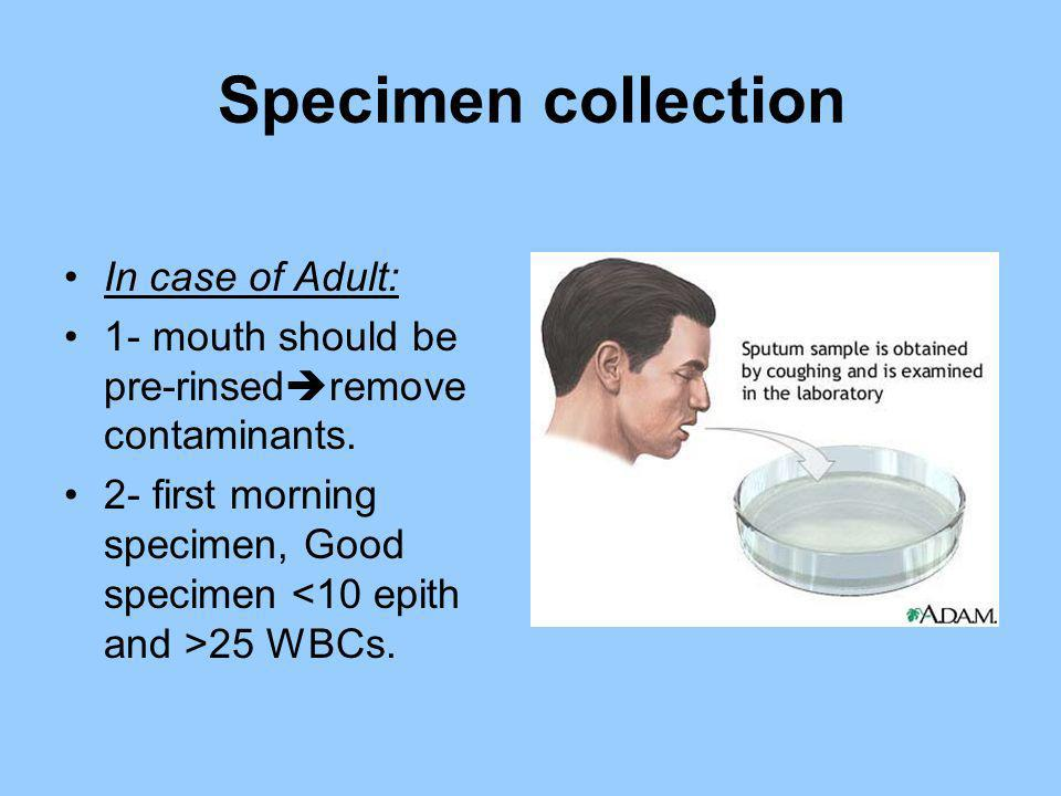 Specimen collection In case of Adult: