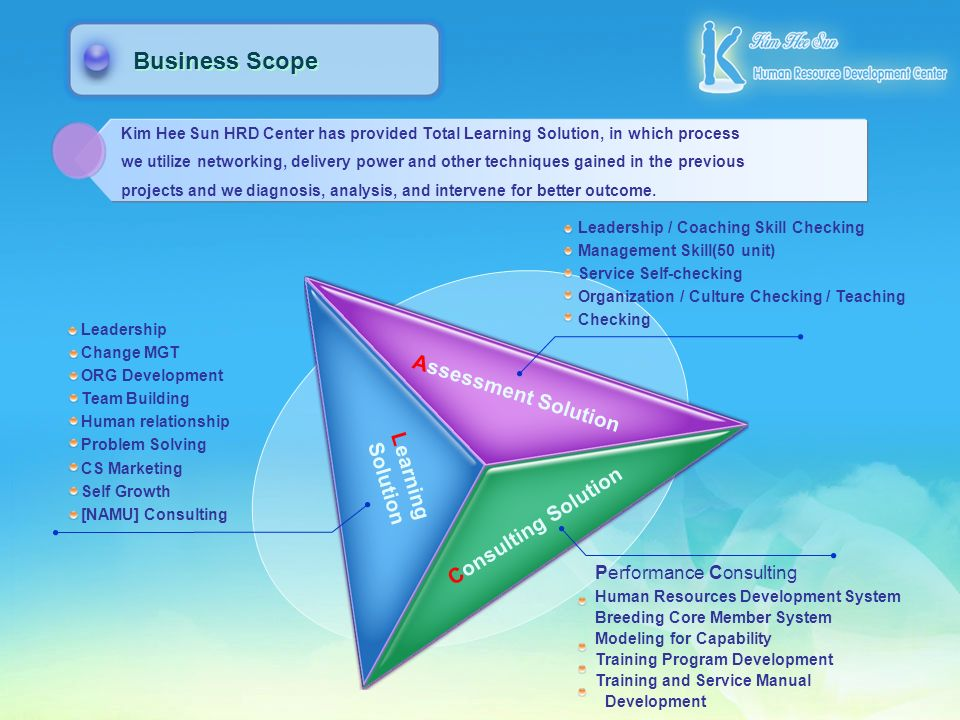 Business Scope Assessment Solution Learning Solution