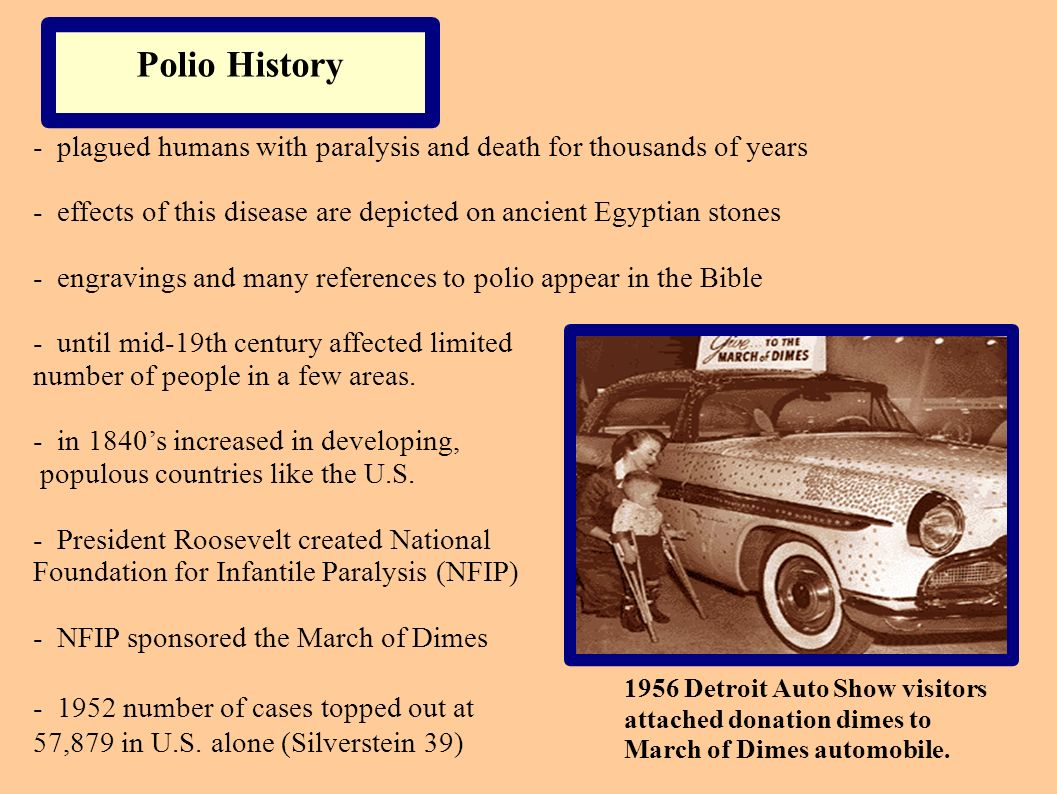Polio History - plagued humans with paralysis and death for thousands of years. - effects of this disease are depicted on ancient Egyptian stones.