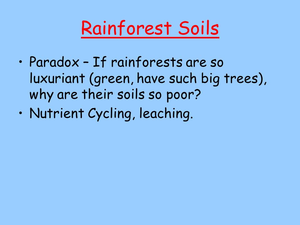 Rainforest Soils Paradox – If rainforests are so luxuriant (green, have such big trees), why are their soils so poor