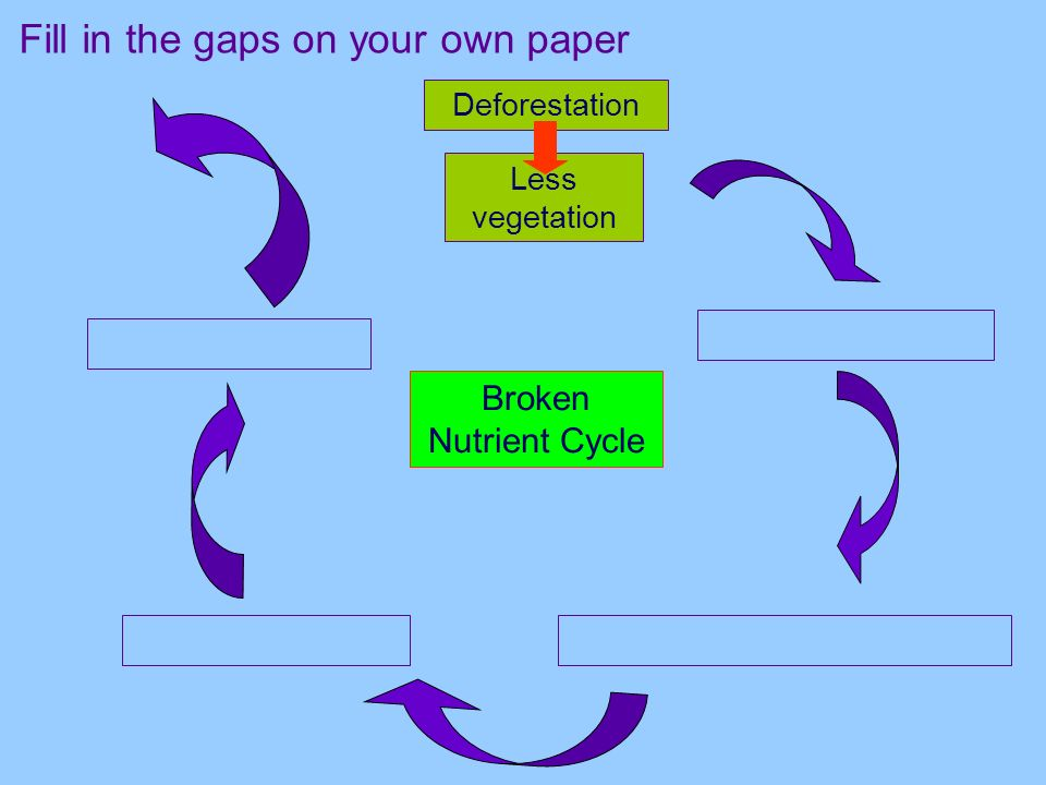 Fill in the gaps on your own paper