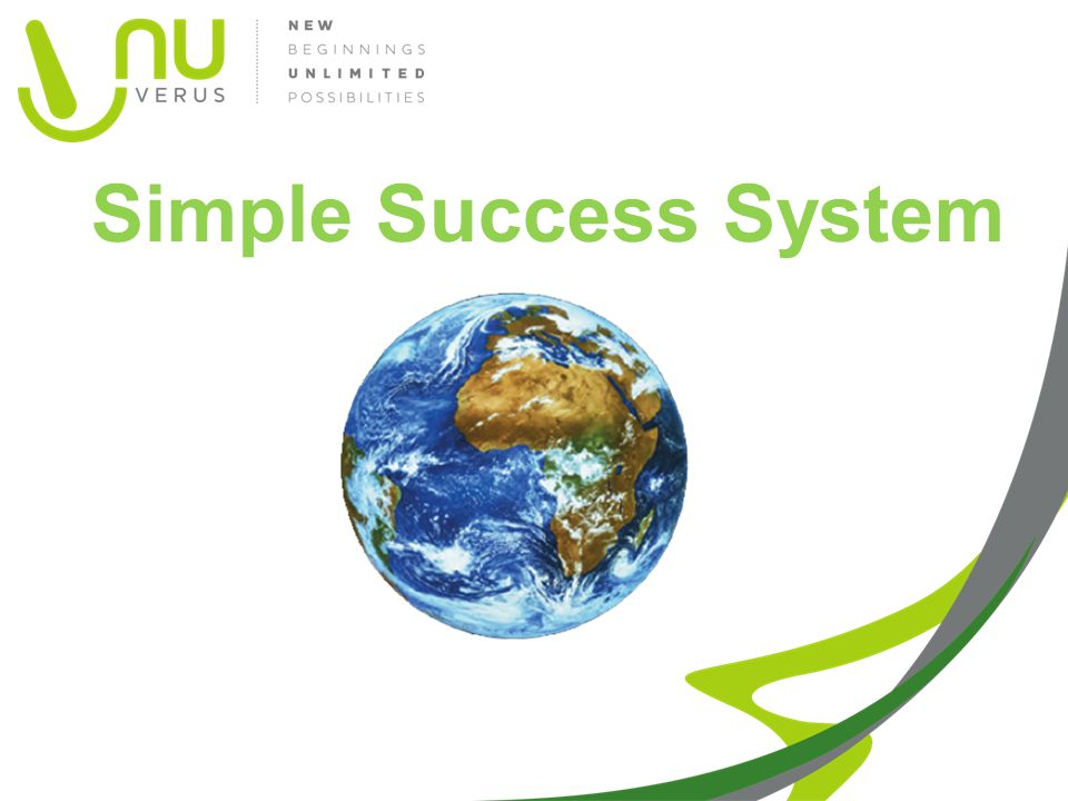 Simple Success System Global Picture