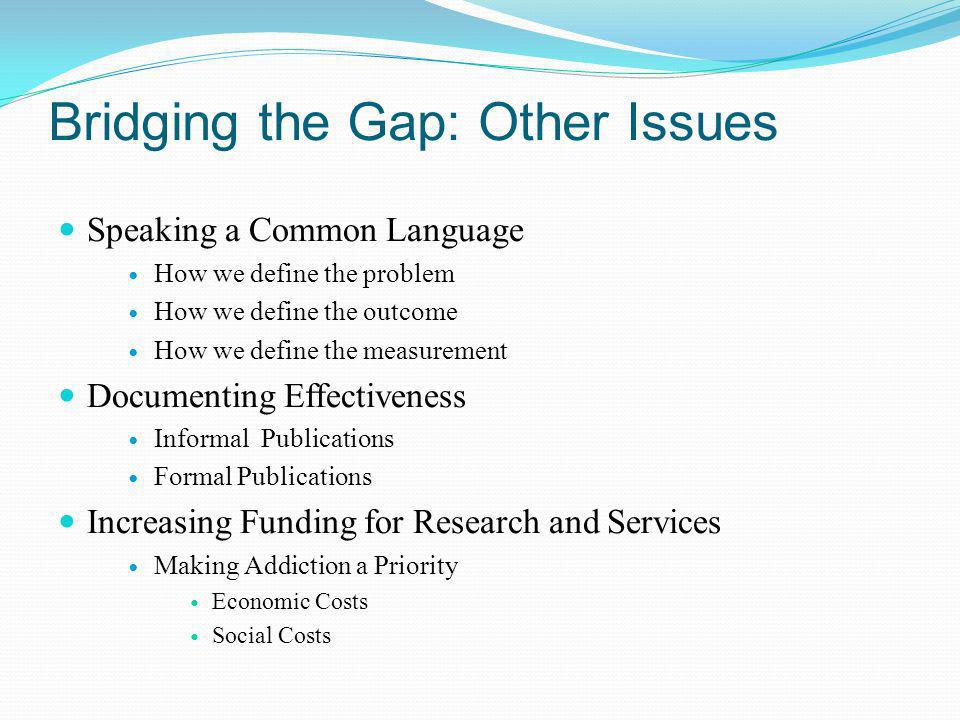 Bridging the Gap: Other Issues