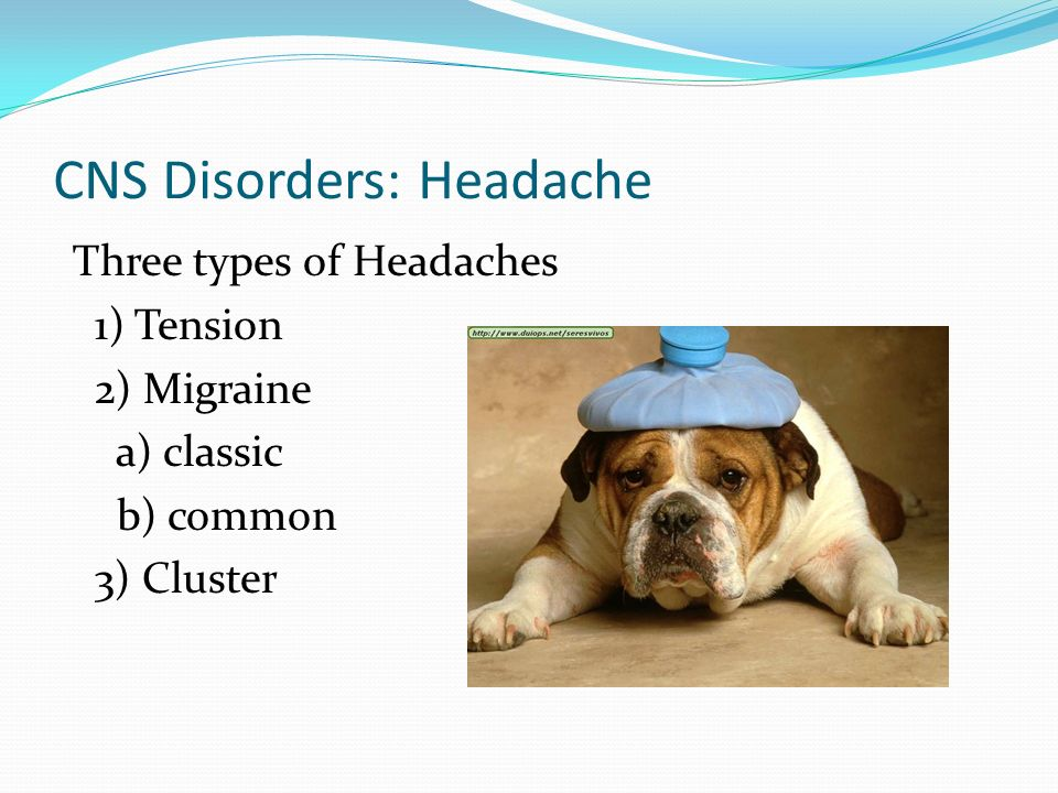 CNS Disorders: Headache