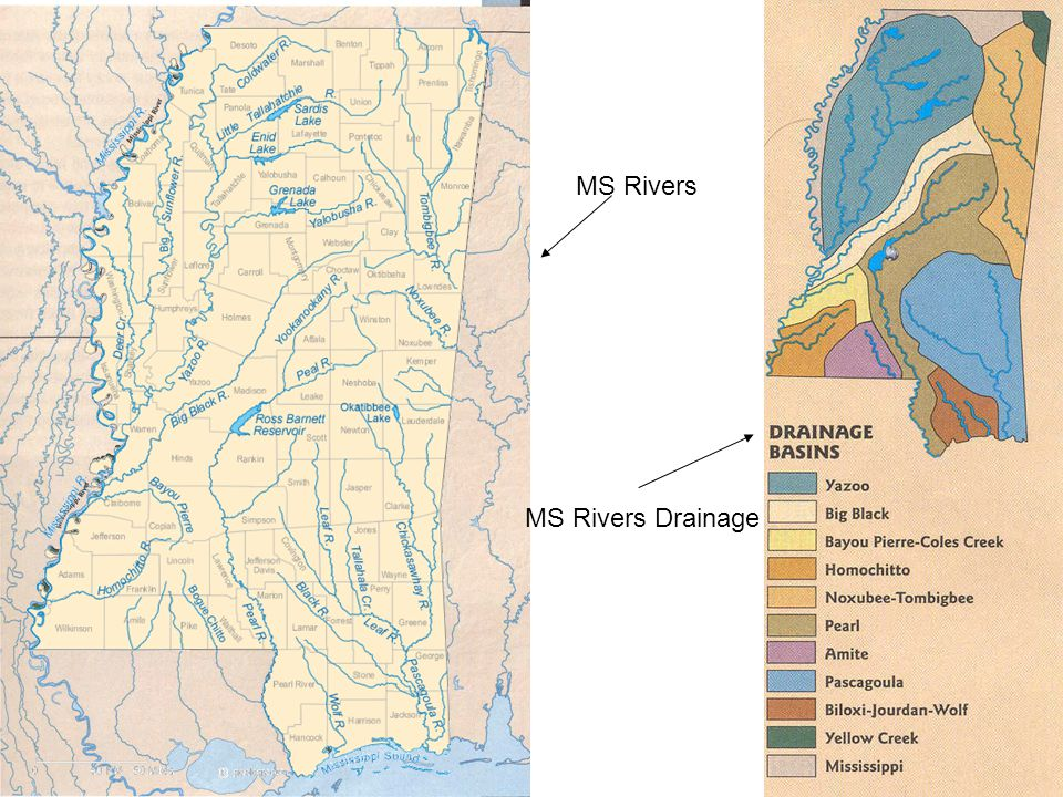 MS Rivers MS Rivers Drainage