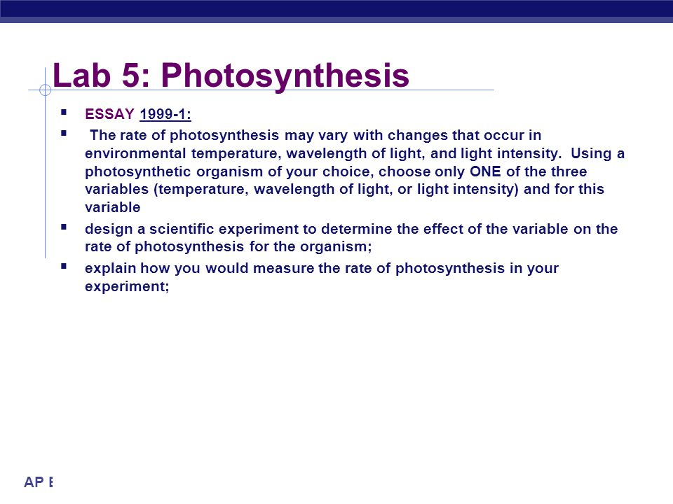Lab 5: Photosynthesis ESSAY 1999-1: