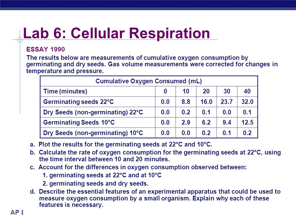 Lab 6: Cellular Respiration