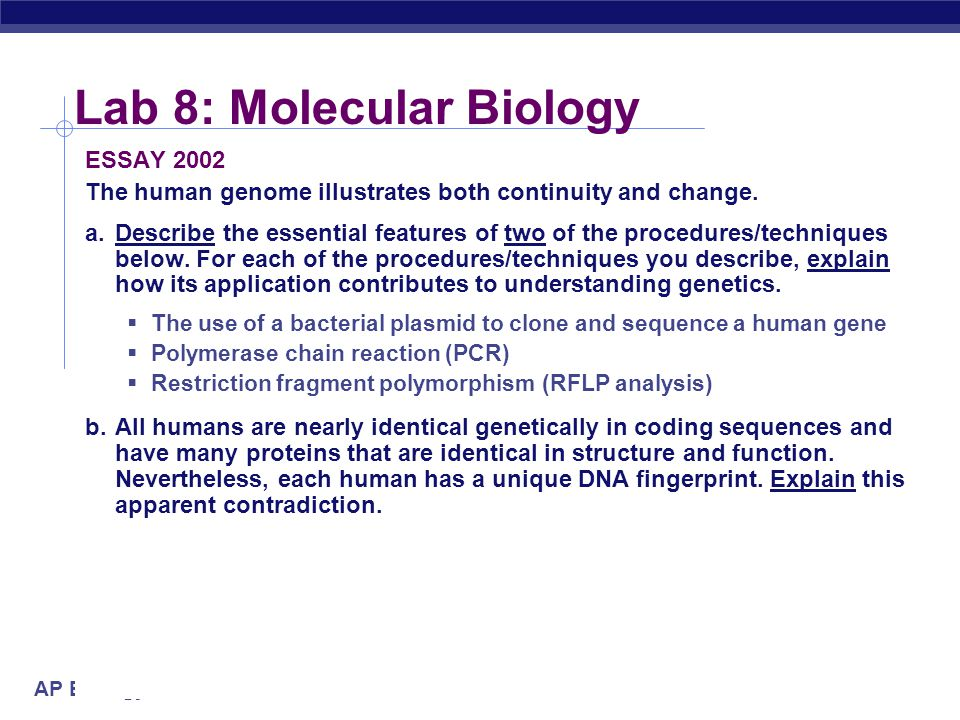 Lab 8: Molecular Biology