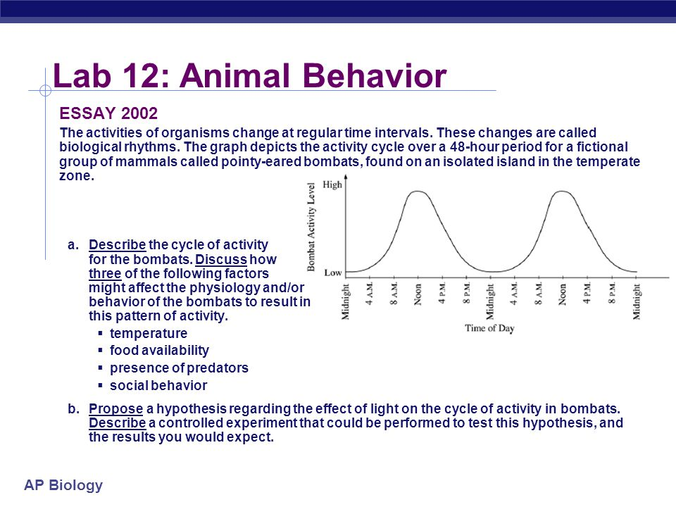 Lab 12: Animal Behavior ESSAY 2002