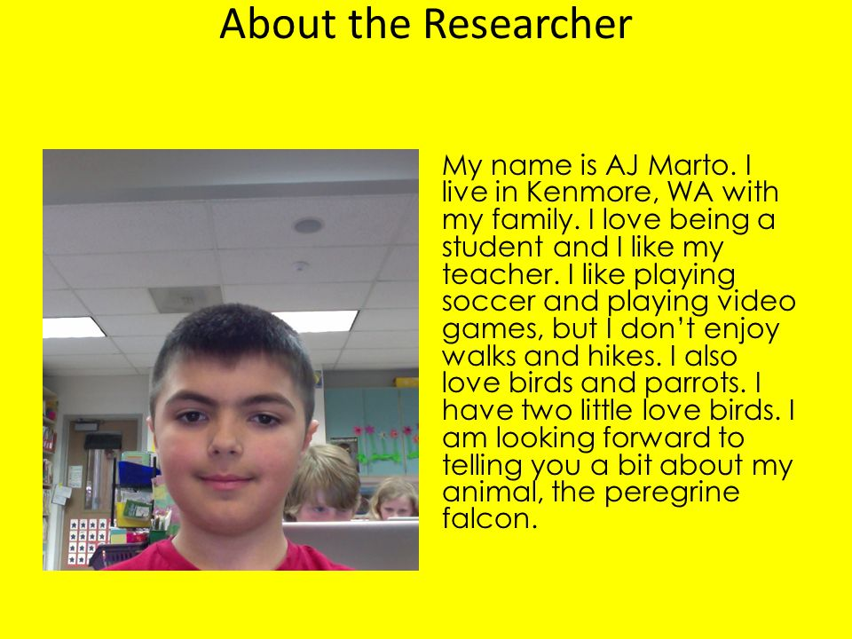 About the Researcher
