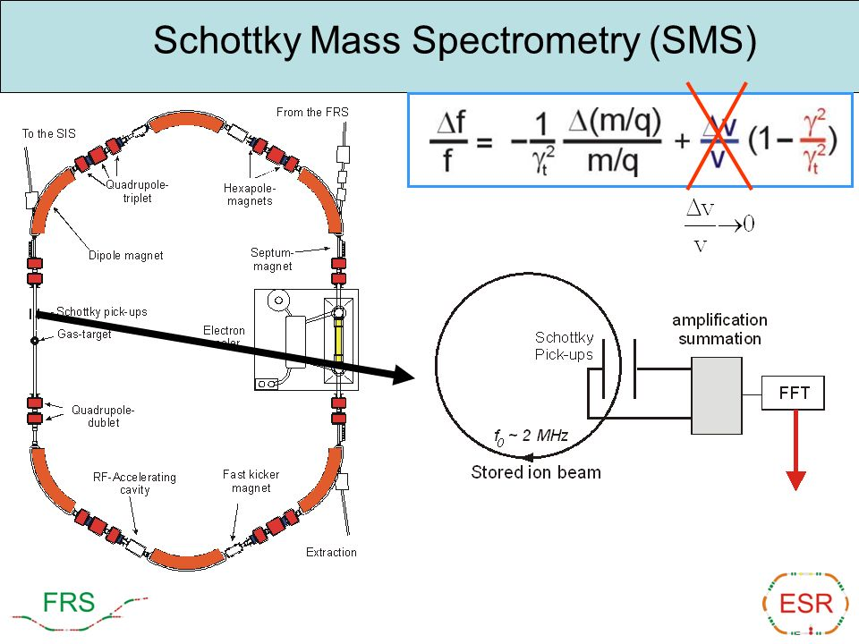 Schottky Mass Spectrometry (SMS)