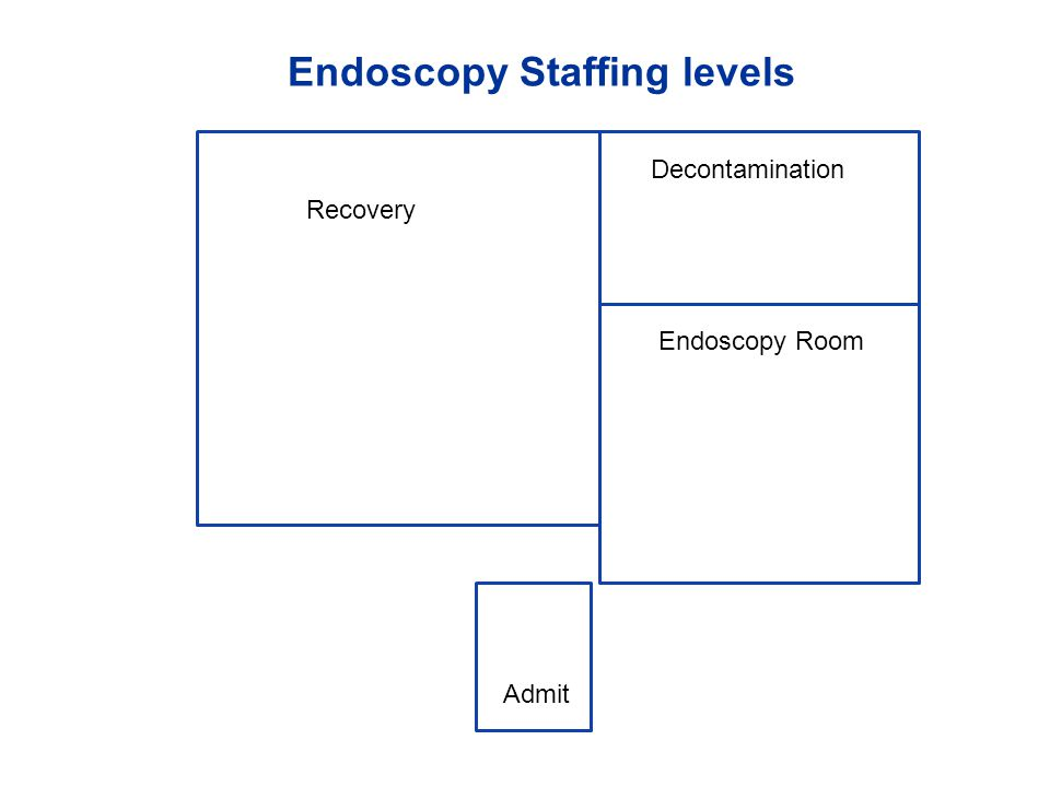 Endoscopy Staffing levels