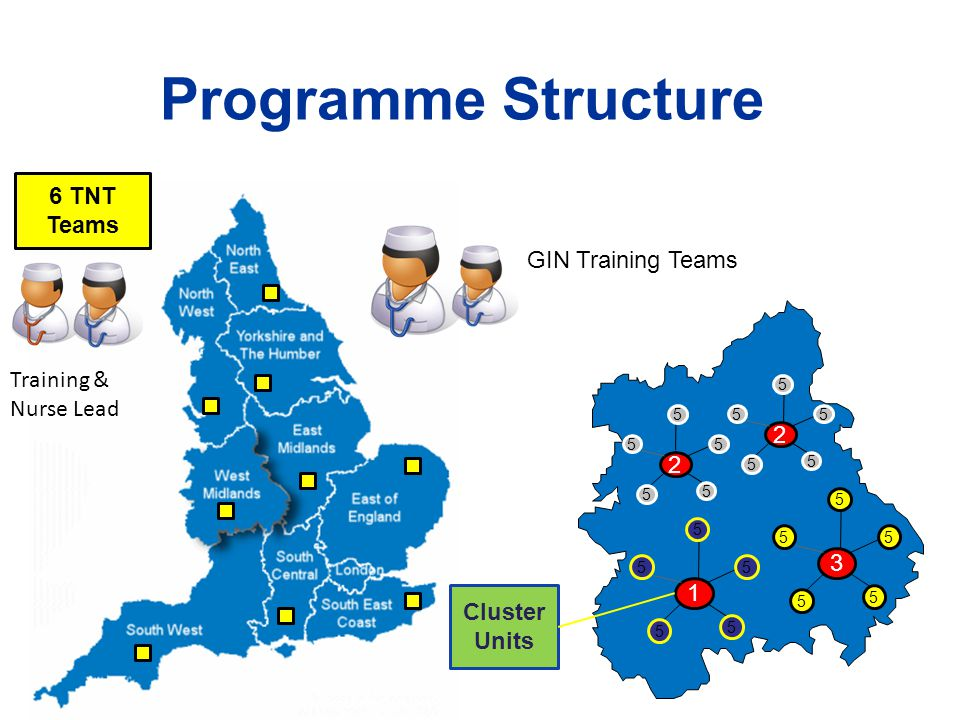 Programme Structure 6 TNT Teams GIN Training Teams Training &