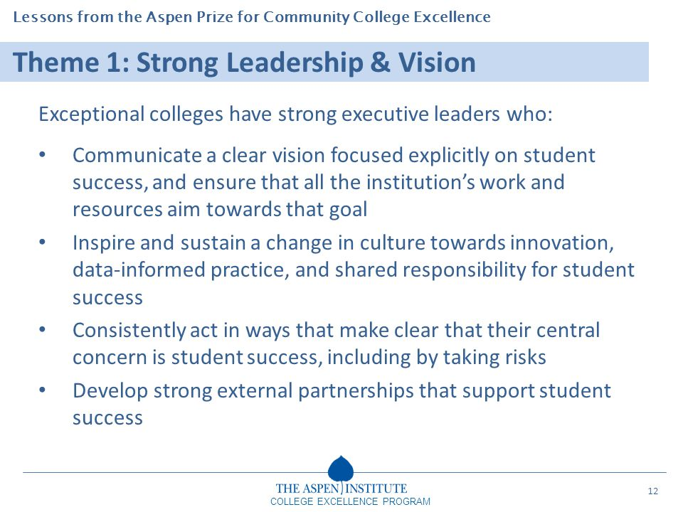 Theme 1: Strong Leadership & Vision