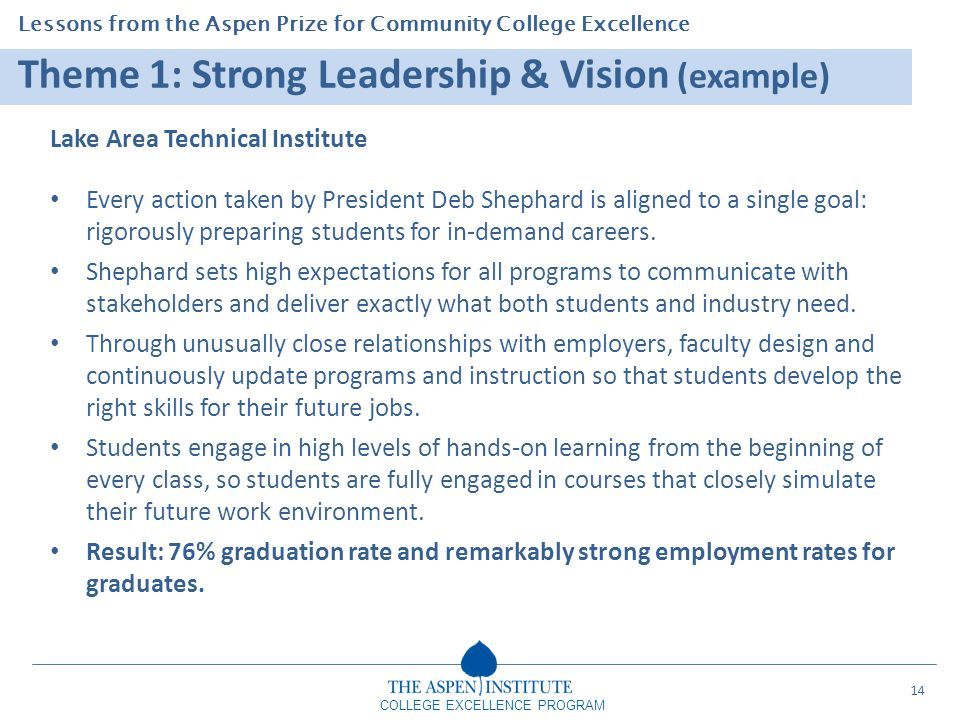 Theme 1: Strong Leadership & Vision (example)