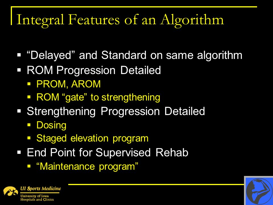 Integral Features of an Algorithm