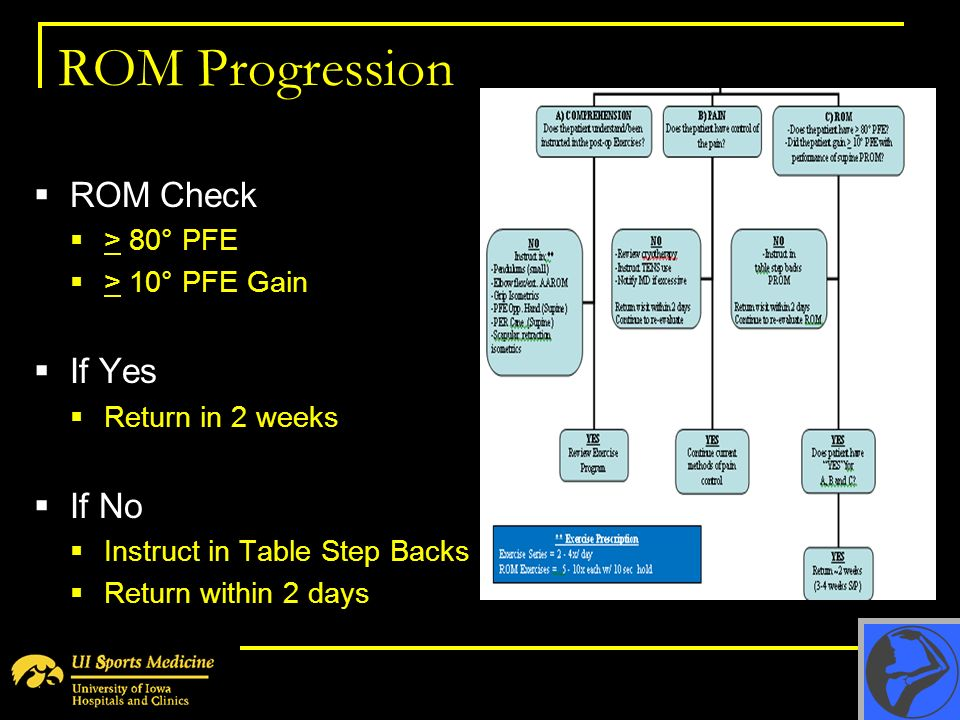 ROM Progression ROM Check If Yes If No > 80° PFE > 10° PFE Gain