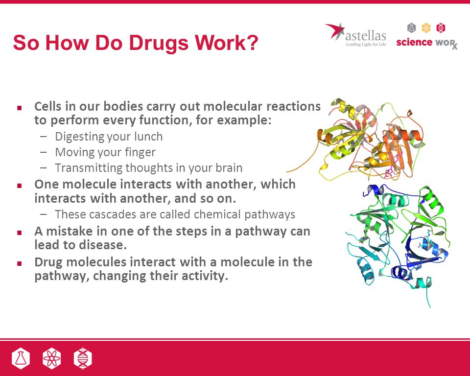 So How Do Drugs Work Cells in our bodies carry out molecular reactions to perform every function, for example:
